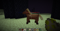 14w25b Hitbox and eye level too low (adult horse).png