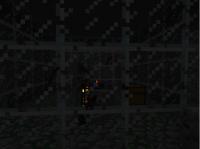 Skeleton Spawning in wal.jpg