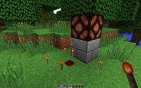 redstone_bug.jpg
