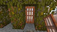 this door is open.jpg