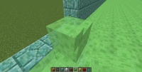 Frame only visible when no slime block behind.png