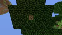 Minecraft 1.7.png