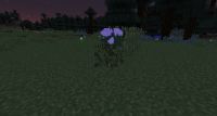 2014-08-23_22.25.50_2.png