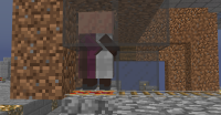 Hereiswherethevillagersglitchedthrough.png
