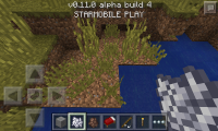 mcpe_grass_on_dirt.png